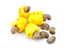 Cashew fruit Stock Photography