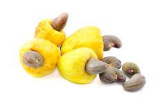 Cashew fruit Royalty Free Stock Images