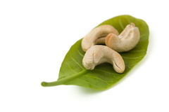Cashew with leaves Stock Photos