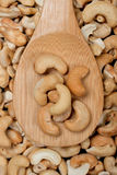 Cashew nut Royalty Free Stock Photo
