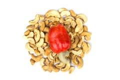 Cashew Nut Apple and Fresh Cashew Nut Royalty Free Stock Photo