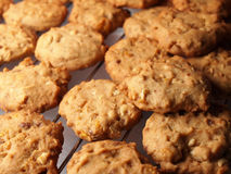Cashew nut cookies on steel grid Royalty Free Stock Photography