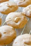 Cashew nut cookies on steel grid Royalty Free Stock Image