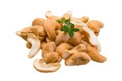 Cashew royalty free stock image