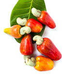 Cashew nut and leaf Royalty Free Stock Photo
