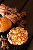 Cashew nut muffin and spices Royalty Free Stock Photography
