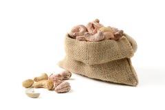 Cashew nut in sack bag Stock Image