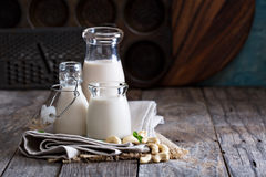 Cashew nut vegan milk Royalty Free Stock Images
