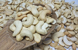 Cashew nut on white background. Cashew nuts on white background Stock Photography