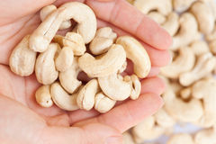 Cashew Nuts 4 Royalty Free Stock Image