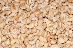 Cashew peeled nut Stock Image