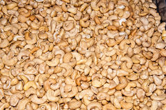 Cashew peeled nut Stock Images