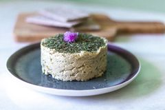 CASHEW VEGAN CHEESE. Homemade, gluten free and dairy free royalty free stock photography