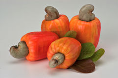 Cashew Royalty Free Stock Images