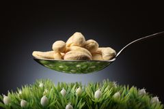 Cashews Royalty Free Stock Photography