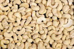cashews Royaltyfri Foto