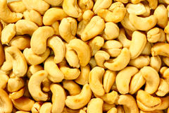 Cashews royalty free stock image