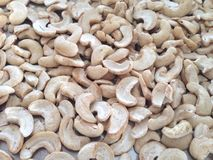 Cashews Stock Images