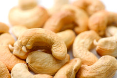 Cashews nut Stock Images