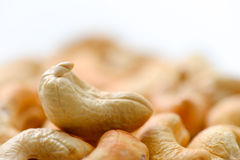 Cashews nut Stock Image