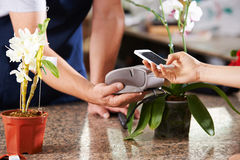Cashless and contactless payment in nursery Royalty Free Stock Images