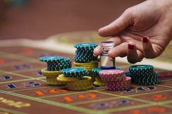 Casino. American Roulette gambling table. With a playing chips and dolly on the layout Stock Photo