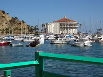 Casino at Avalon on Santa Catalina Island Royalty Free Stock Images