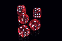 Casino dice. Five red casino dice on the black background Royalty Free Stock Images