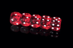 Casino dices. Five red casino dices on the black background Stock Images