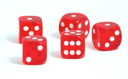 Casino dices. Five red casino dices on the white background Royalty Free Stock Image