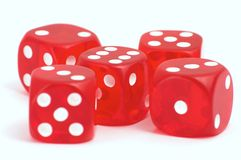 Casino dices. Five red casino dices on the white background Stock Photos
