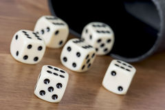 Casino dices on the table. Casino dices with cup on the table Royalty Free Stock Photos
