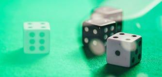 Casino, jugando Dados blancos y negros en fondo abstracto del fieltro verde fotografía de archivo