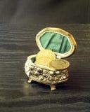 Casket med mynt Arkivfoto