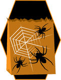 Casket Spiders Stock Photography