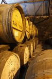 Casks of Whisky Stock Photos