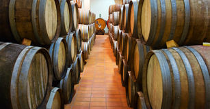 Casks  with wine Stock Photography