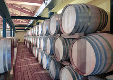Casks in wine cellar Royalty Free Stock Image