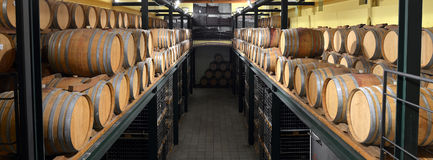 Casks in wine cellar and bottle Stock Photography