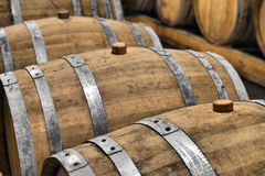 Casks in wine cellar Stock Image