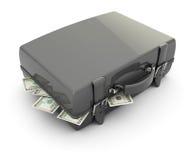 Caso com dinheiro Imagens de Stock