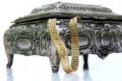 Caso d'argento con il jewelery Fotografie Stock