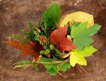 Caso da colheita da folha Fotografia de Stock Royalty Free