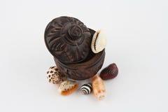 Caso de madeira do vintage com escudos Foto de Stock Royalty Free