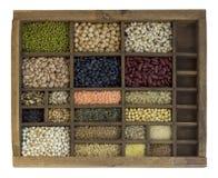 Caso del compositore con i fagioli assorted, granuli, semi Fotografie Stock