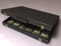 Caso di affari con i dollari Fotografia Stock