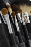 Caso profesional del maquillaje con los cepillos Imagen de archivo libre de regalías