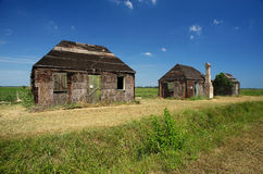 Casoni. Codigoro (Fe),Emilia Romagna,Italy, traditional old buildings of wood and straw for farm on the edge of a field of tomatoes Royalty Free Stock Image