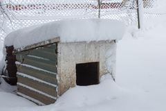Casota na neve, nevada uma casa de cachorro no inverno após uma tempestade de neve imagens de stock royalty free