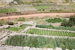 Caspana村庄,智利 免版税库存图片